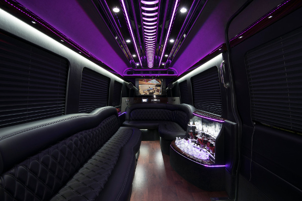 12 Passenger Party Buses Indianapolis